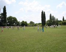 Cricket Open Day